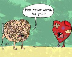 You never learn, do you ? Valentine's day quote, love, joke