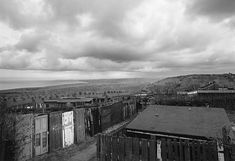 Allotments, Easington Colliery, County Durham 1983 © John Davies