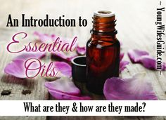 Are you confused by essential oils? Here is a basic guide on what they are and how they are made.