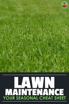 garden care schedule garden care schedule Lawn maintenance doesnt just happen in spring and summer its a year-round process. Heres a cheat-sheet for what to do in every season of the year. Lawn Care Schedule, Lawn Care Tips, Fall Lawn Care, Marketing Logo, Pool Garden, Lawn And Garden, Garden Grass, Lawn Care Companies, Lawn Care Business
