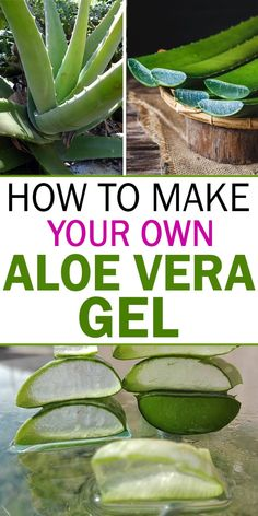 Aloe Vera is well known for its healing properties for many years. The leaves of aloe Vera contains a gel and that contains saponins which acts as natural immune protectors for the plants. Best Nutrition Food, Health And Nutrition, Health And Wellness, Nutrition Websites, Health Care, Face Health, Nutrition Articles, Nutrition Guide, Health Diet