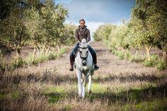 Interview with Paulo & Maria Caetano | Lusitano Horse Finder