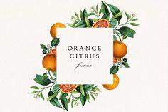 Orange Wedding Invitations, Wedding Invitation Kits, Party Invitations, Orange Party, Summer Clipart, Art Antique, Clip Art, Frame Clipart, Frame Wreath
