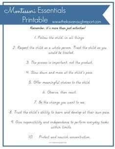 Montessori Essentials with Printable
