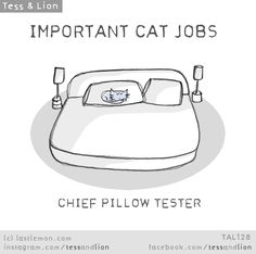 Tess and Lion: IMPORTANT CAT JOBS - CHIEF PILLOW TESTER