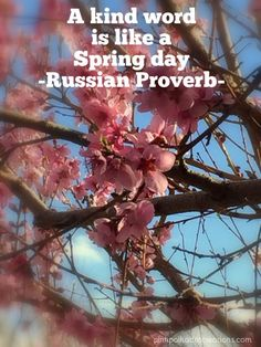 Peach Blossom Spring Quotes - Pink Polka Dot Creations