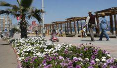 Viña del Mar: a simpática cidade-jardim
