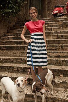 Darling dress http://rstyle.me/n/ixa75nyg6