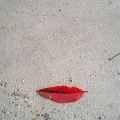 Du Land Art avec des feuilles mortes Photo