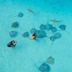 Tahiti! Photo by Tim McKenna Photography