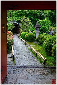 Eisetsu-in temple entrance - Japanese Garden Design Japanese Landscape, Japanese Garden Design, Japanese Architecture, Japanese House, Japanese Gardens, Asian Garden, Chinese Garden, Garden Villa, Garden King
