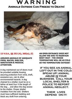 DON''T LET THIS HAPPEN TO ANOTHER DOG!! or CAT or ANY PET! KEEP THE THEM INSIDE ... REPORT THAT THAT ARE OUTSIDE IN COLD WEATHER! BE THEIR VOICE & SALVATION! NOW THAT THE TEMPERATURES HAVE DROPPED!!!!! PLEASE SHARE!!!! —