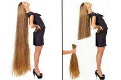 Long Hair Cuts, Long Hair Styles, Barber Chair, Amazing Hair, Hair Transformation, Hair Pictures, Cut Off, Scissors, Haircuts