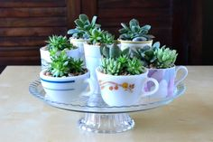Thanks, I Made It: DIY Inspiration: Succulent Planters