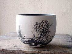 Arbustos, Sobre blanco negro paisaje