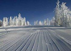 Community: 10 Signs You're Ready For Ski Season