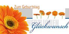 Grußkarte 006719-836, DIN-lang Format, Zum Geburtstag, inkl. Kuvert. Mit Blaufolien-Prägung! http://www.litei.de/glueckwunsch-karten/grusskarte-006719-836-din-lang-format-zum-geburtstag-inkl-kuvert