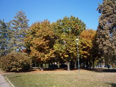 Il giardino Cavallotti in una limpida giornata d'autunno
