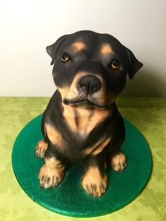 puppy dog rottweiler - Cake by Andrea