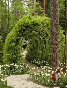 Ландшафтный дизайн, пейзажный сад с лабиринтом и средиземноморскими мотивами | Landscape design, landscape garden with a maze and Mediterranean motifs