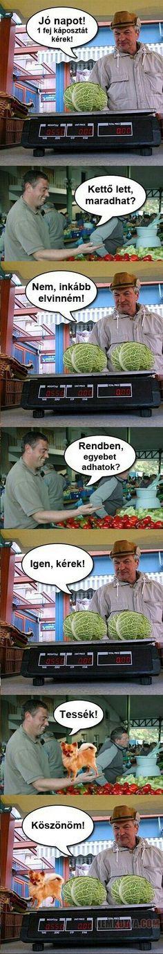 Bad Memes, Funny Memes, Jokes, South Park, Funny Cute, Sarcasm, Cool Kids, Cool Photos, Haha