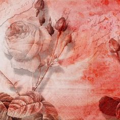 """Photo from album """"цветы"""" on Yandex. Paper Background Design, Simple Background Images, Collage Background, Flower Background Wallpaper, Picsart Background, Background Vintage, Flower Backgrounds, Textured Background, Hd Backgrounds"""