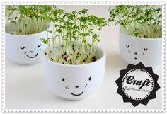 Macetitas Sonrientes #diy #manualidades #plantas #maceta