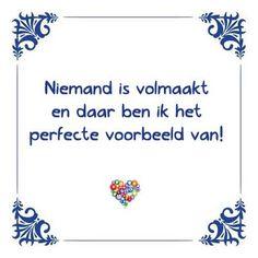 Niemand is volmaakt