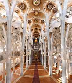 One of my favorite places on earth?..La Sagrada Familia-must return to see the finished product