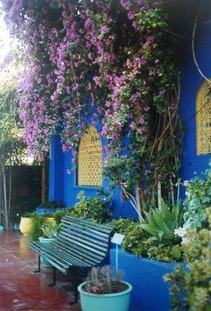 Joanne Fleming Design: Tangled up in blue.....