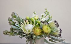 Soft & long lasting Mothers Day arrangment of neriflora proteas, leucadendrons, banksia & magnificent white protea with tulips & for a bit of perfume, stock. #natives #protea #kingprotea #banksias #mothersdayflowers #flowersformum #nuts #stock #impact #nativefloristperth #nativeflowersperth #daisyhillflowers