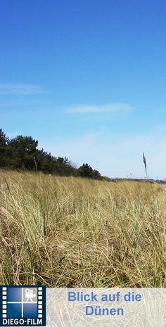 Dünen am Meer... http://diego-film.de/ #ostsee #urlaub #kueste #ruegen #meer #duenen