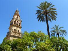 torre Alminar - cattedrale - Cordoba