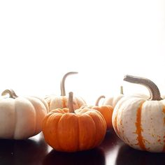@laviedethree    How could we possibly choose just one when they are all so adorable!  #pumpkin #patch #possibilities #orange #white #rustic #magical #dreamy #spooky #halloween #restorationhardware #picoftheday #seasonal #beautiful #fallfoliage #love #inspired #decor #southernliving #southernloving #laviedethree #washington #dc #dallas #sandiego