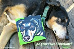 Got your own custom pet portrait from Pawtraitz? Teutul does. ©LapdogCreations #sponsored Dog Mom | Pet Portrait | Gifts for Pet Parents | Rescue Dog | Life with Dogs