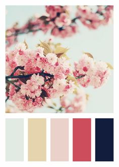 Color Scheme | Pinks, Natural Tan, Light and Dark Blue