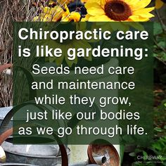 Taking care of a garden is similar to taking care of our body: it is best done regularly and consistently.
