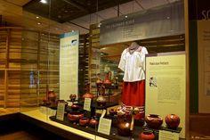 heard museum display - Google Search