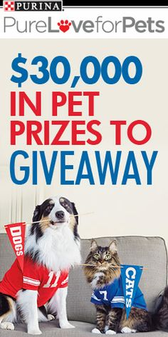 $30,000 In #Pet Prizes To #Giveaway! #contest #pets #dog #cat