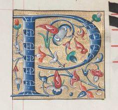 letter-p Illuminated Letters, Illuminated Manuscript, Medieval Manuscript, Handwriting Fonts, Calligraphy Letters, Letter Art, 16th Century, Hand Lettering, Alphabet