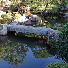 #japan #kyoto #temple #tojiin #pond #bridge #carp #garden  Poor fish are cold.