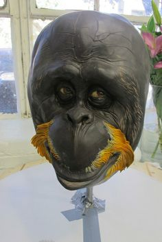 Orangutan face by Karen Portaleo for Highland Bakery, via Flickr