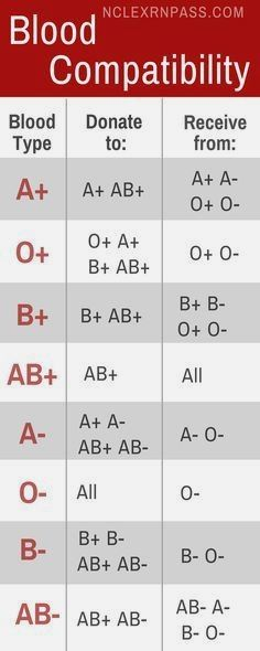 Blood Compatibility Made Easy - Medical Assistant/Nursing - Learning blood types made easy for nursing student. Easy Chart to understand blood compatibility, w - Medical Facts, Medical Information, Medical Science, Medical Humor, Medical Careers, Blood Compatibility, Nursing School Notes, Nursing Schools, Medical School