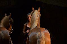 Des spectacles équestres étonnants - Izia Le Goff