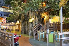 MustDo.com   Treehouse at Golisano Children's Museum of Naples C'mon Naples, Florida attractions