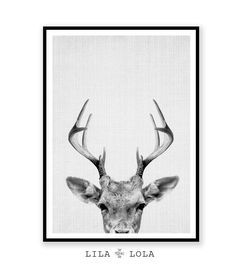 Deer Print Deer Antlers Woodlands Decor Wilderness von LILAxLOLA