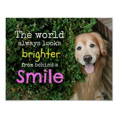 Golden Retriever Behind A Smile Print by #AugieDoggyStore