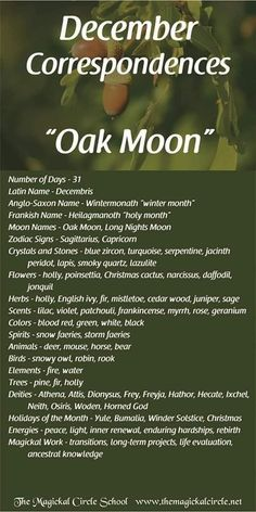 Moon Zodiac, Zodiac Signs Sagittarius, Lucia Light, Magick, Witchcraft, November Full Moon, Birth Month Quotes, Full Moon Names, Wiccan Quotes