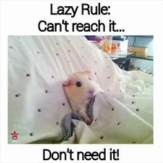 Lazy Rule: Can't reach it, don't need it!