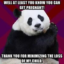 Infertile Panda - Well at least you know you can get pregnant! Thank you for minimizing the loss of my child.